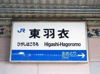 hama38.JPG